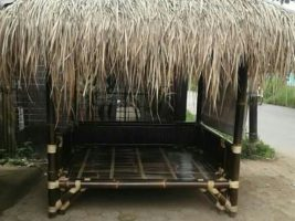 sekepat bambu
