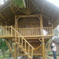 bungalow bambu