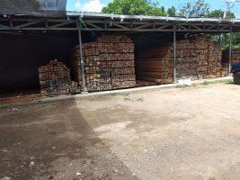 Beli kayu Kalimantan