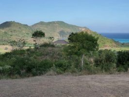 Tanah  bukit di mawun
