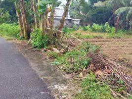 tanah kuripan lombok barat