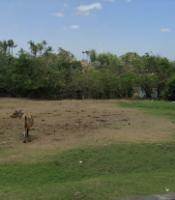 tanah badung