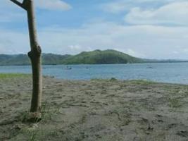 tanah pantai